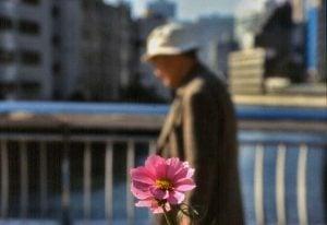 Flower guy