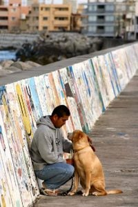 man and dog in japan